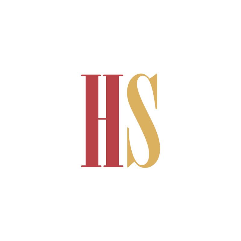 HS | Mesotech